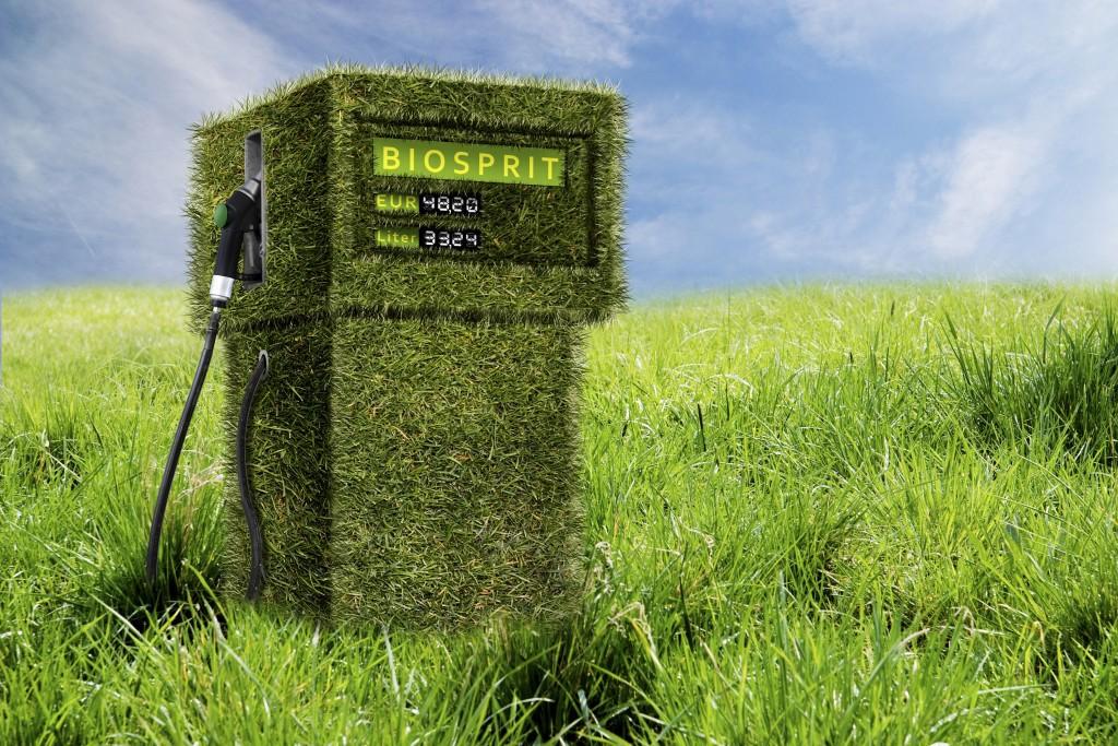 Биотопливо в Украине: конкуренция за рынок сбыта